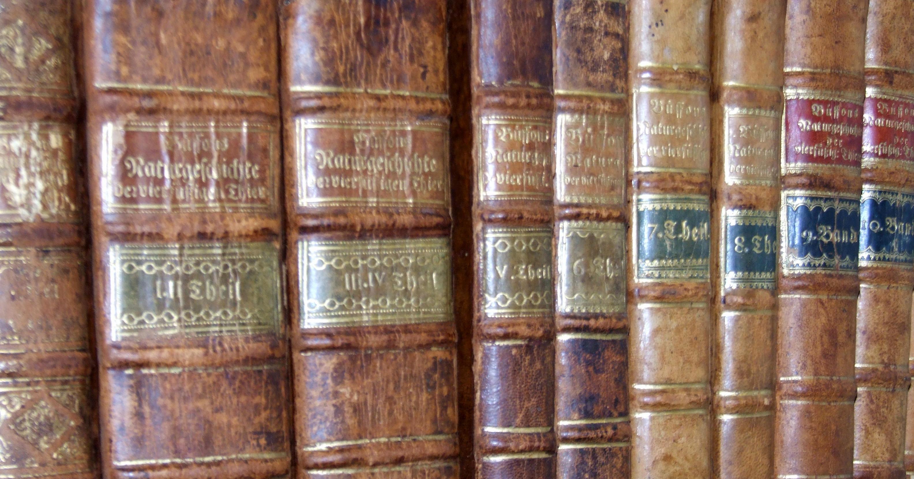 Lwl Bibliothekveröffentlichungen Lwl Museum Für Naturkunde