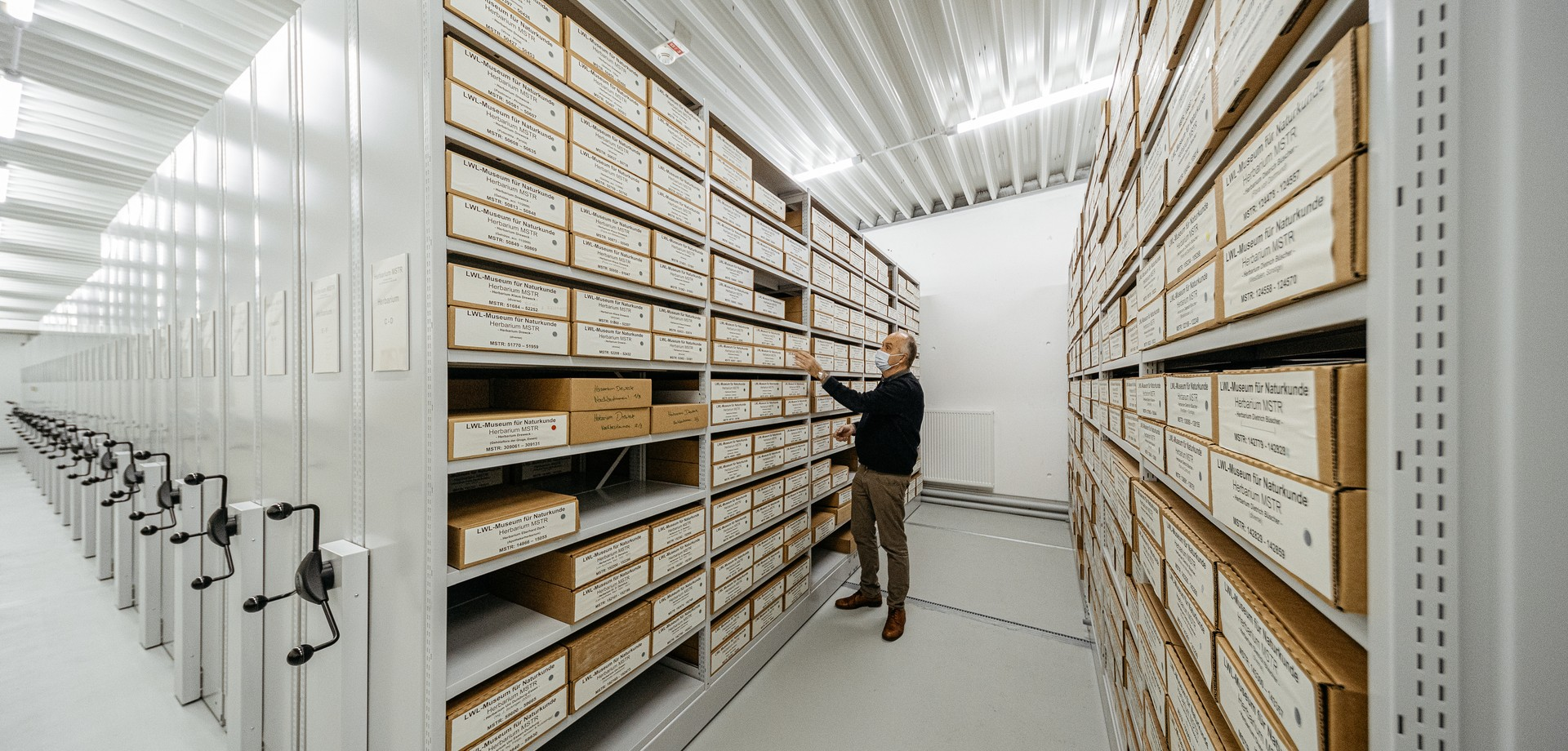 The herbarium on the large Compactus shelves in the central store of the the LWL-Museum of Natural History.